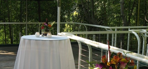 Zoo Treetops Deck
